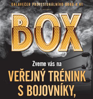 Galavečer profesionálního boxu a K1